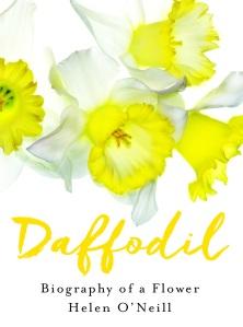 DaffodilCover
